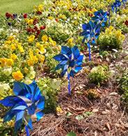 Micro Pinwheel Garden